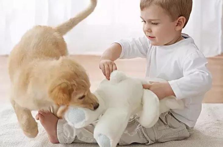 二十三个月宝宝早教方法内容和游戏3