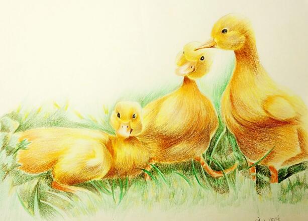 儿歌三只小鸭子,宝宝早教动作儿歌1