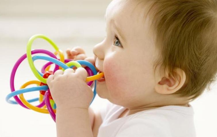七个月宝宝早教可以教一些什么12