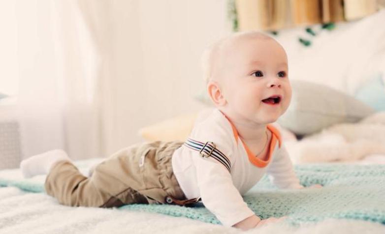 小孩八个月不会爬,八个月宝宝发育标准2