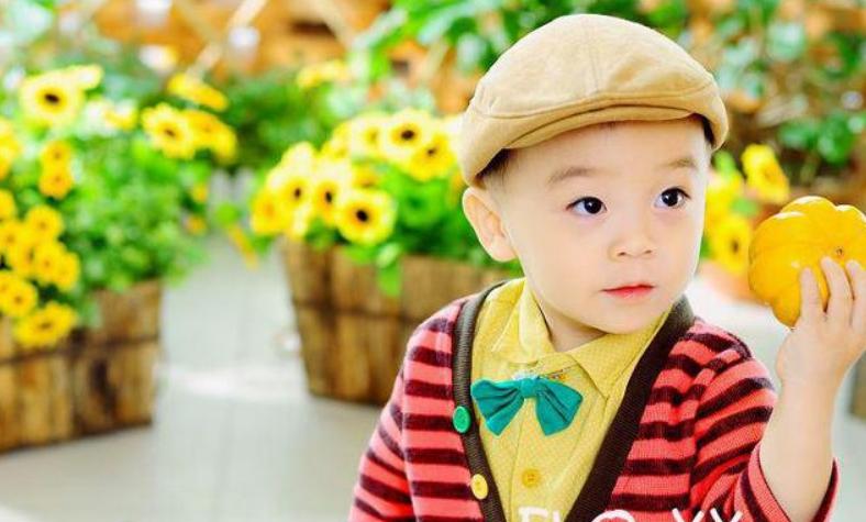 二十八个月宝宝早教,28个月幼儿早教游戏推荐2