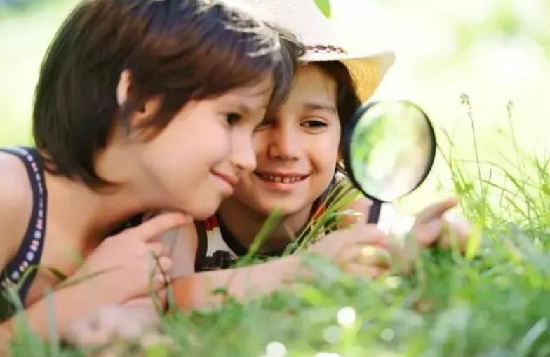 2~3岁亲子课详细教案,两至三岁早教游戏方案12