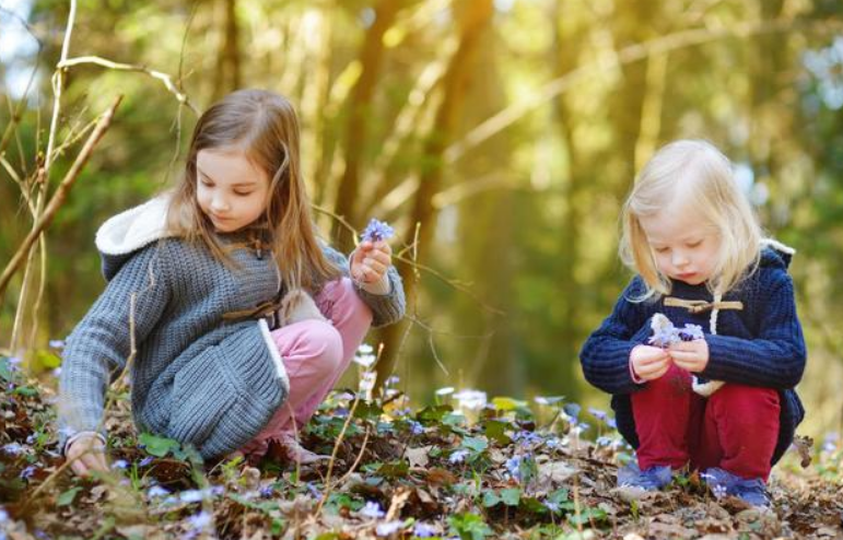2岁宝宝早教游戏,两岁幼儿益智小游戏4