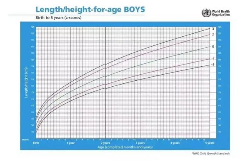 2岁宝宝一天奶量标准表,两岁幼儿发育参考表3