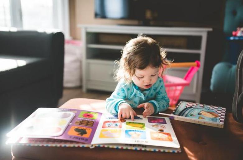 2岁宝宝家庭早教,两岁幼儿在家早教学习内容1