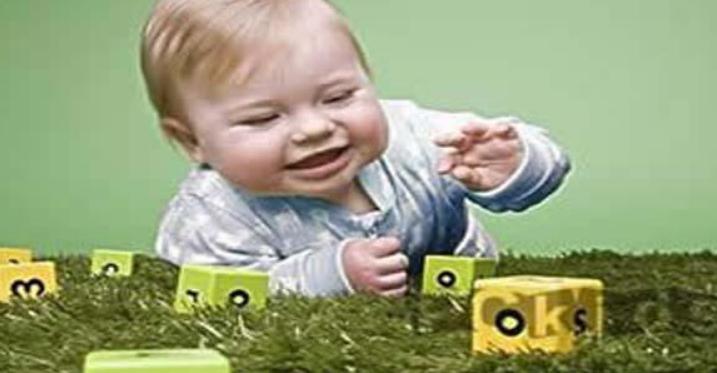 一岁两个月宝宝早教训练内容和知识3