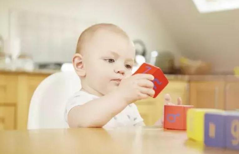 婴儿早教玩具应该如何选择,婴儿早教玩具推荐1