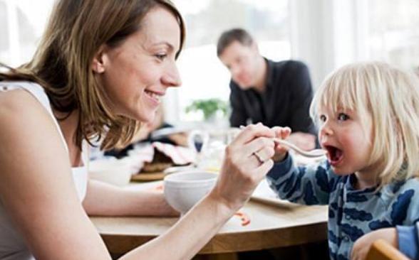 两岁宝宝早教课程方案和内容2