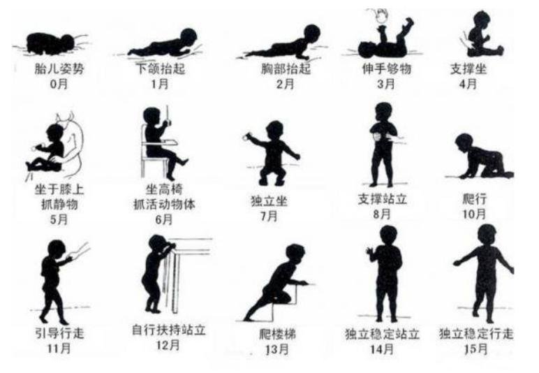 0-30个月宝宝大动作训练重点,促进宝宝的大脑发育1
